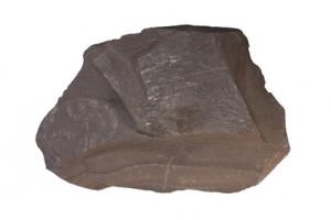 Shale sample